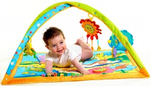 Best-Baby-Play-Gym-Reviews
